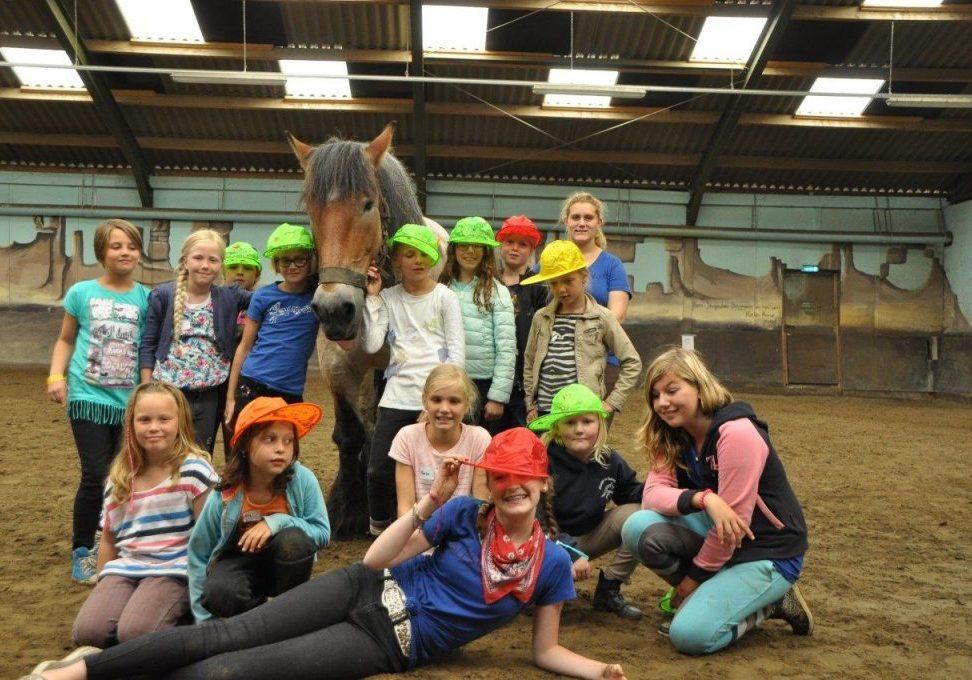 Pony-dagkamp